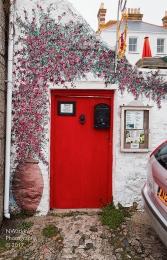 red floral door