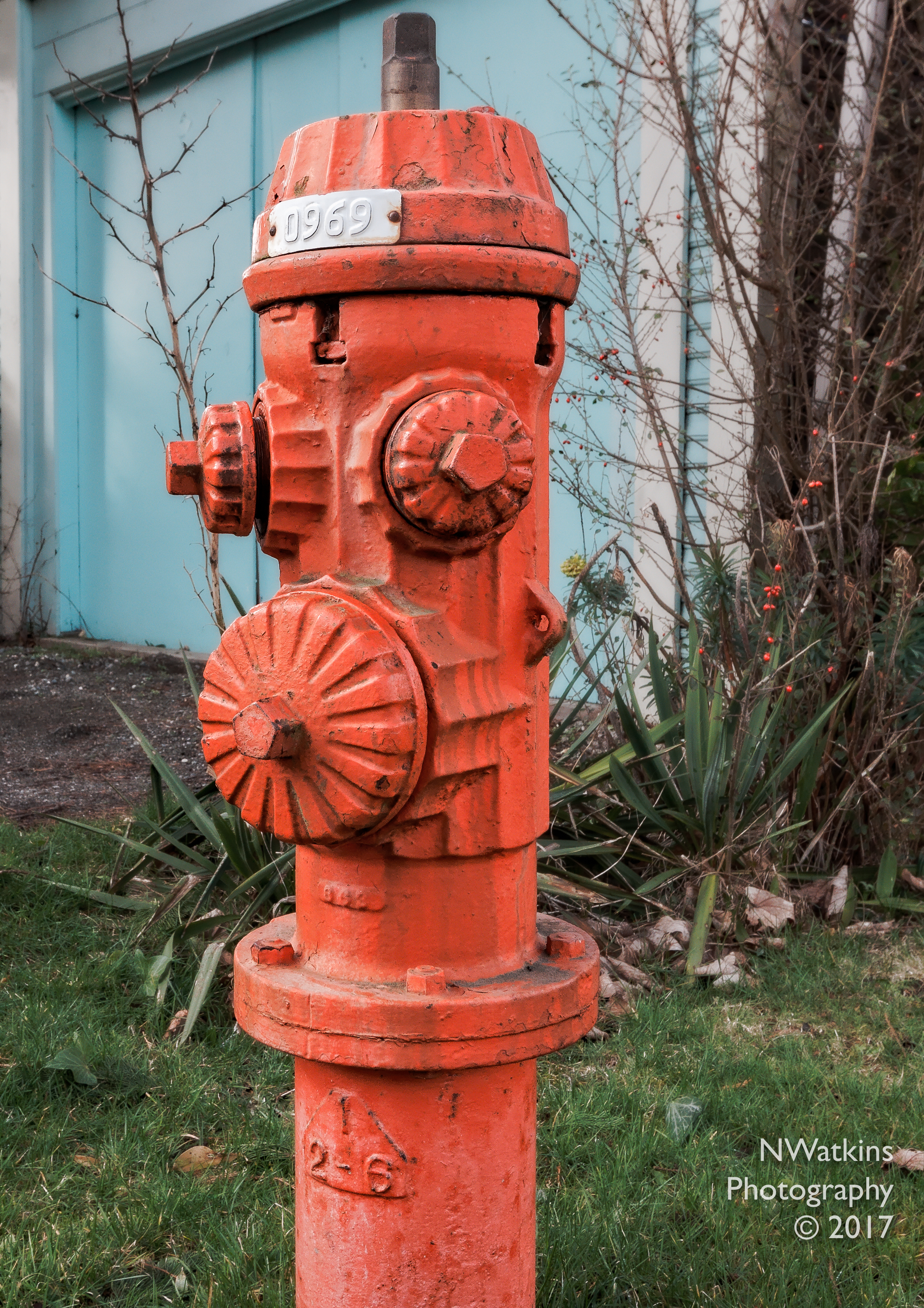 cobc-fire-hydrant