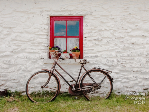 bicycle and flower pots