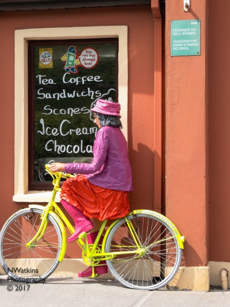 bicycle and treats