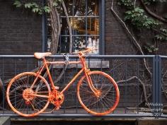 rail bike?