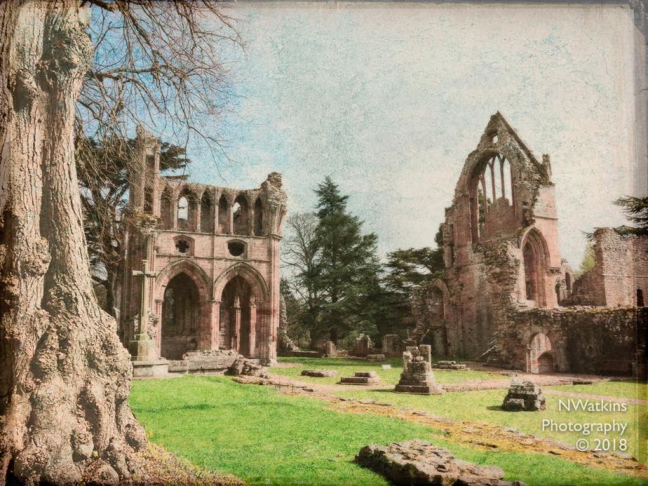 dryburgh abbey texture cw