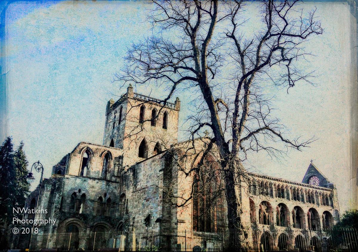 jedburgh abbey texture cw