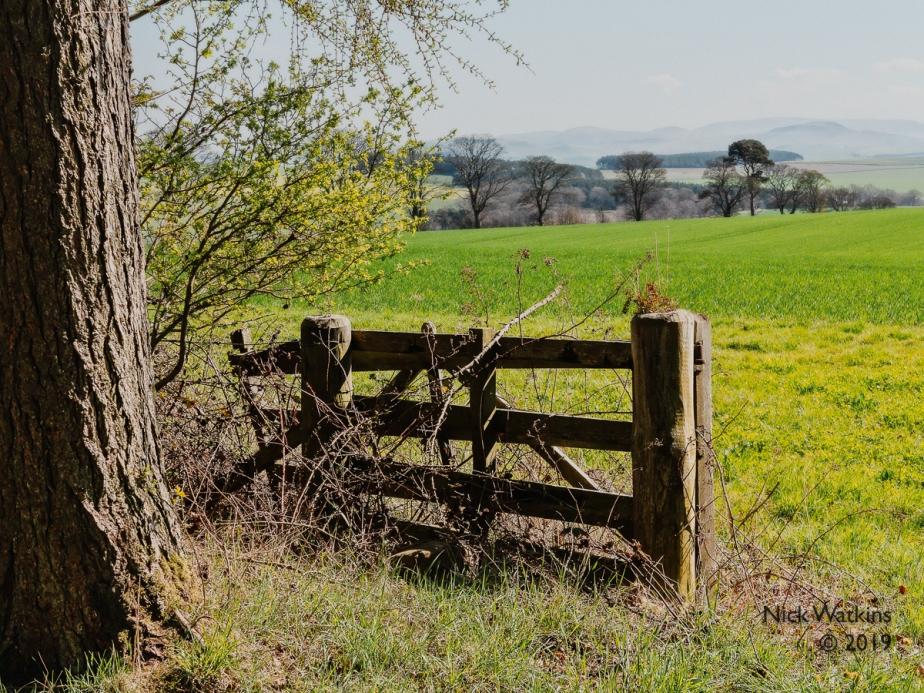 landscape gate cw